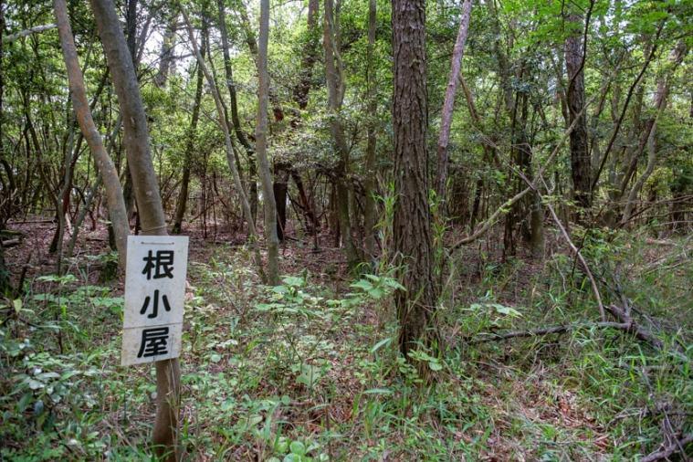tenjin-yama-jo_07_5271