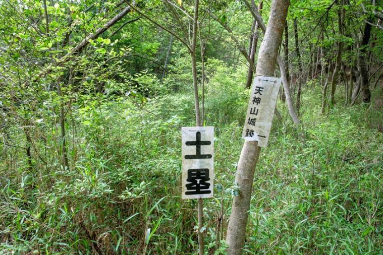 tenjin-yama-jo_08_5273