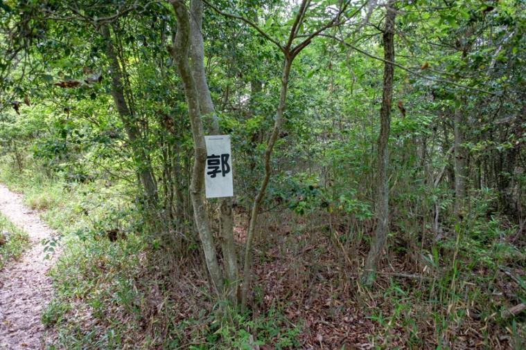 tenjin-yama-jo_10_5276