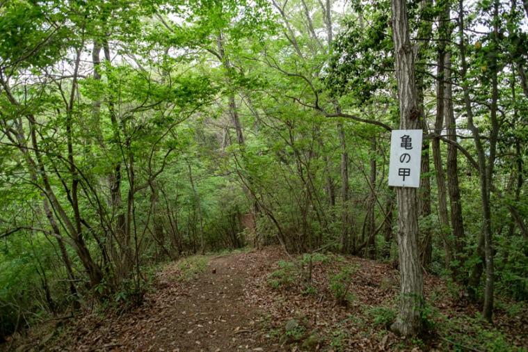 tenjin-yama-jo_40_5337