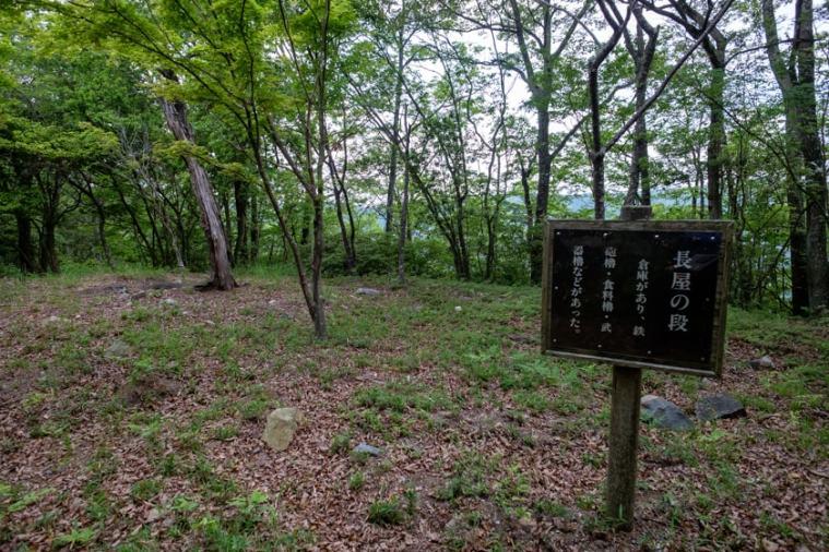 tenjin-yama-jo_67_5377