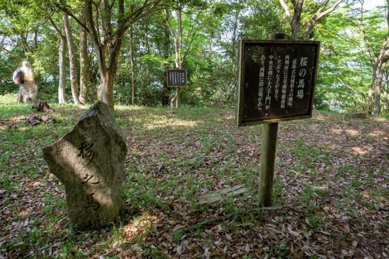 tenjin-yama-jo_77_5400s