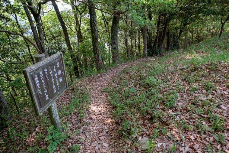 tenjin-yama-jo_82_5406
