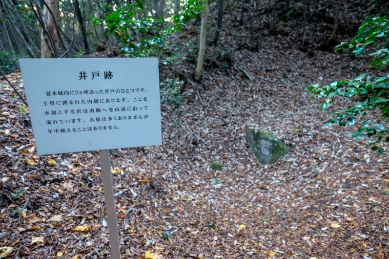 tsumagi_9492