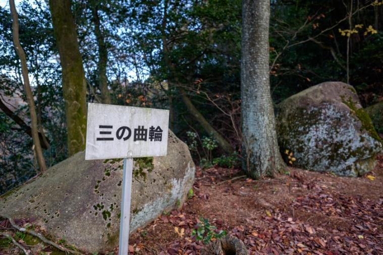 tsumagi_9507