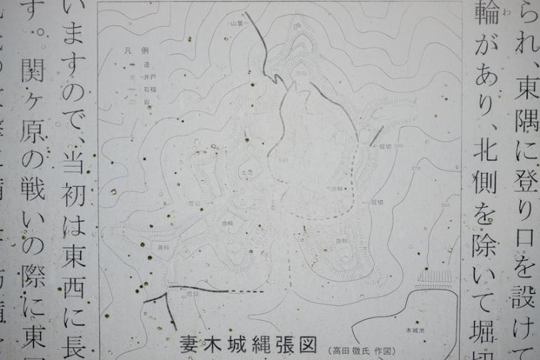 tsumagi_9519