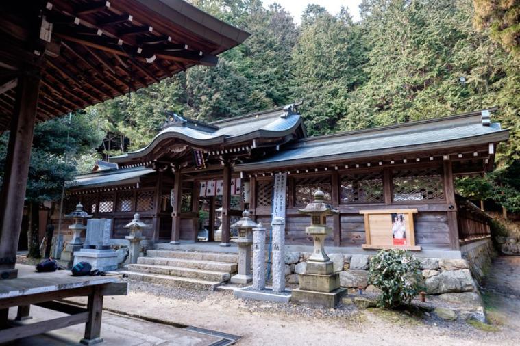 usayama_53_5116