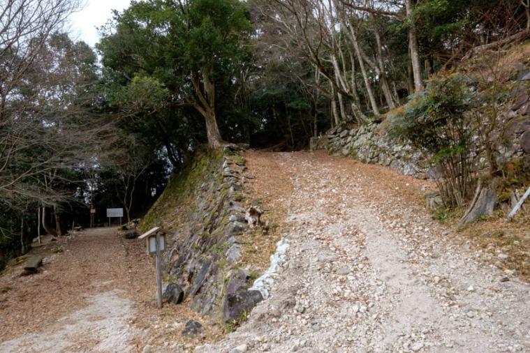tsunomure_32_1882