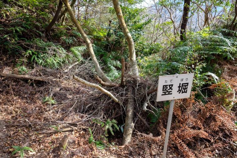 ichinomiya_103_4756