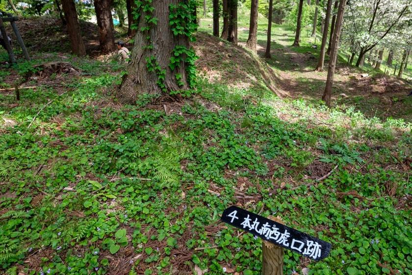 inawashiro_jo-71_0490