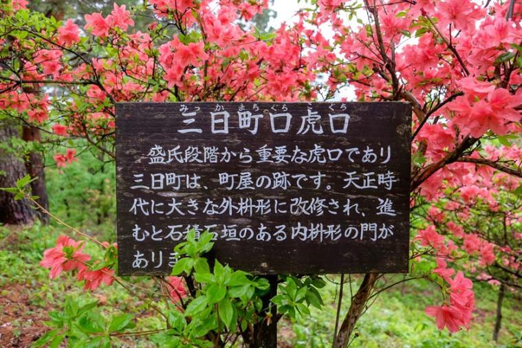 mukai_haguroyama-45_0079