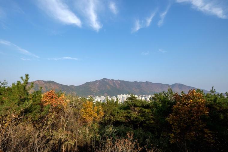 wajo_yansan-26_7671