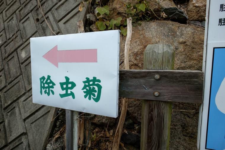 innoshima_umakami-03_3609