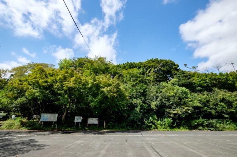 tobayama_01_8087